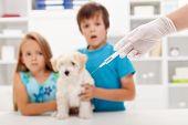 Kids at the veterinary doctor with their little kitten about to get an injection poster