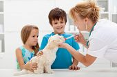 Kids with their pet at the veterinary doctor - fluffy dog receiving medication poster