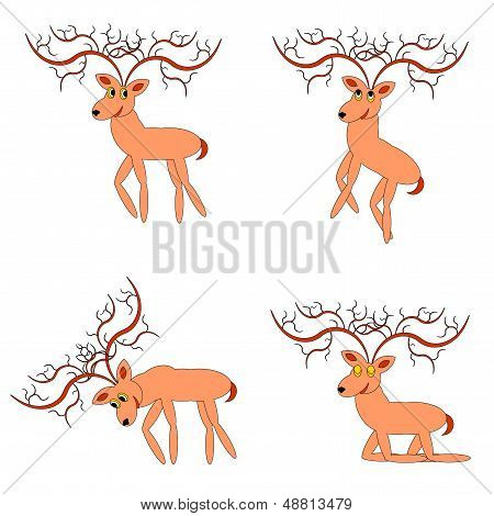 Funny Deers On A White Background