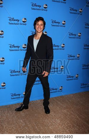 LOS ANGELES - AUG 4:  Peter Gadiot arrives at the ABC Summer 2013 TCA Party at the Beverly Hilton Hotel on August 4, 2013 in Beverly Hills, CA