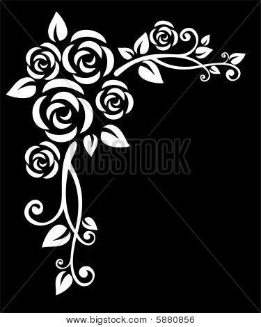 White Floral Pattern