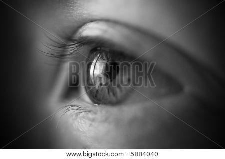 Woman Eye Concept