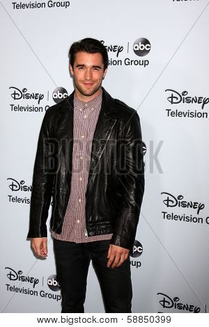 LOS ANGELES - JAN 17:  Joshua Bowman at the Disney-ABC Television Group 2014 Winter Press Tour Party Arrivals at The Langham Huntington on January 17, 2014 in Pasadena, CA