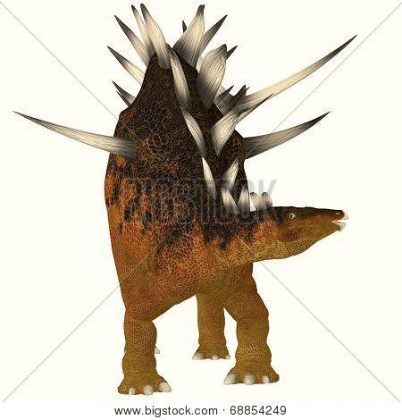 Kentrosaurus On White