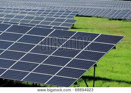 Huge Field Of Solar Power Panels On Meadow
