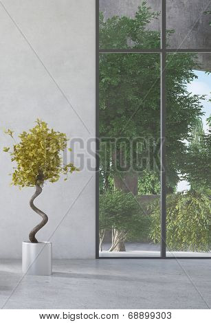 Potted plant inf front of concrete wall and huge floor-to-ceiling window in a modern airy room