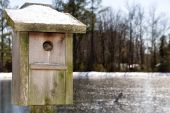 A snowy birdhouse in front of a frozen pond. poster