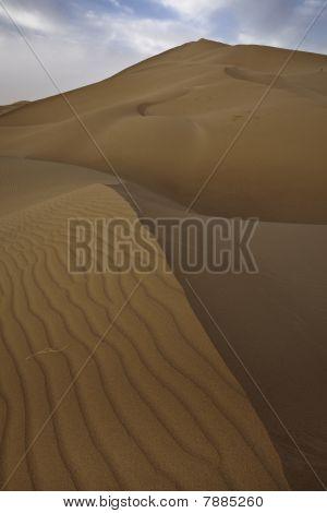 Sand Dunes In Sahara.
