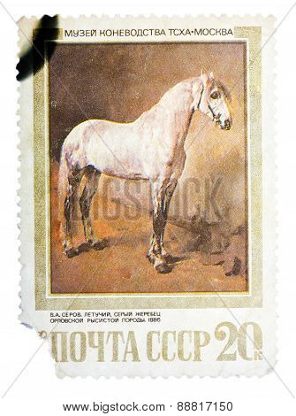 Stamp printed in USSR, shows Letuchya, a Gray Orlov Trotter Stal