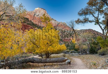 The Watchman Trail, Zion National Park, Utah