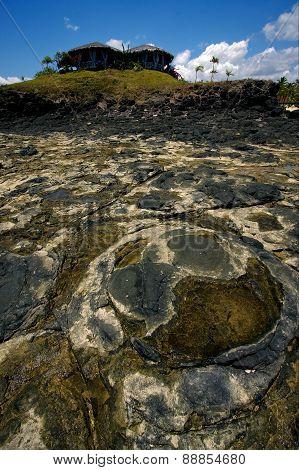 Stone In Andilana Beach