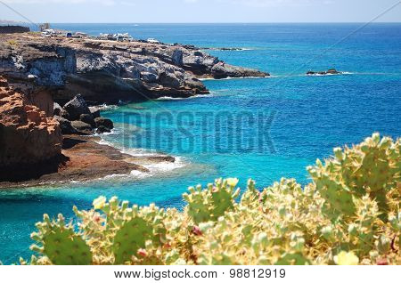 Turquoise bay and volcanic cliffs in Playa Paraiso on Tenerife, Spain poster