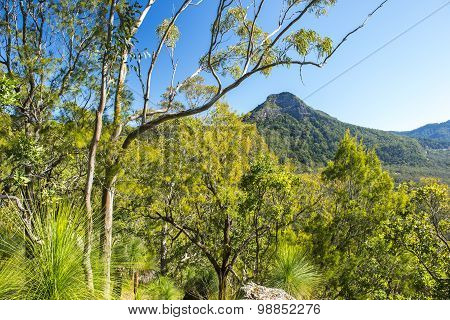 Spicers Gap Lookout in the Scenic Rim, Queensland