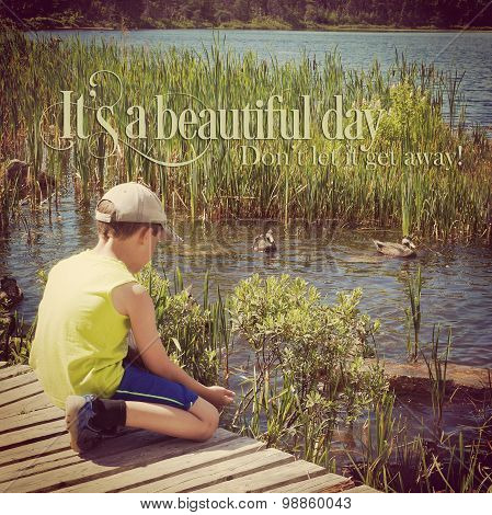 Young Boy Feeding Ducks With Quote