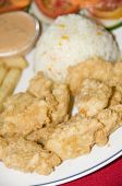 breaded filet of fish meal pescado empanizado with rice french fries and typical salad in corn island nicaragua poster