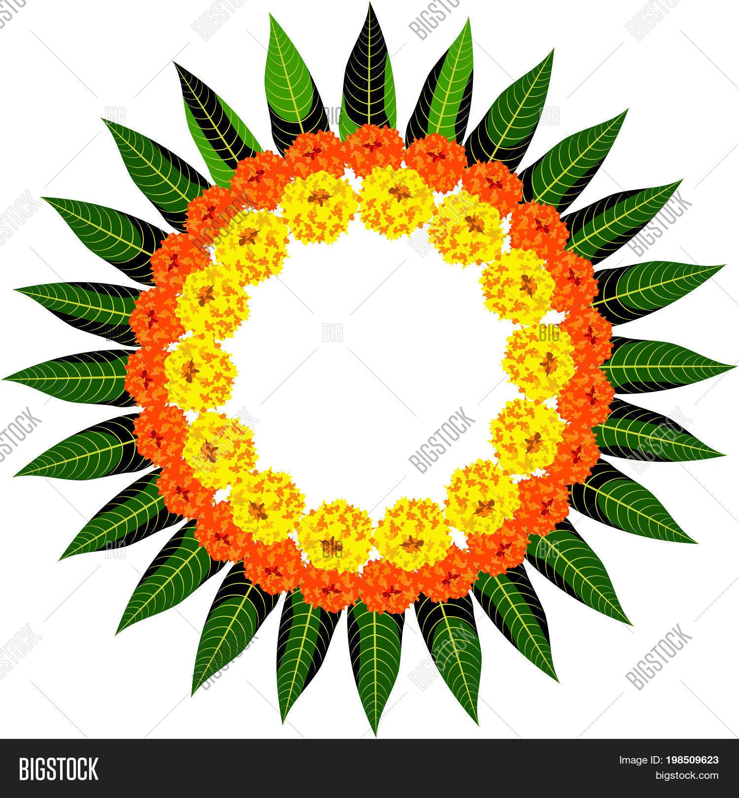 Vector Illustration Flower Rangoli Vector  for Flower Rangoli Vector  565ane
