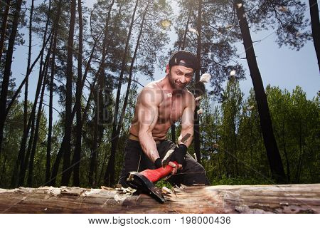 Lumberjack Worker Chopping Down A Tree Breaking Off Many Splinte