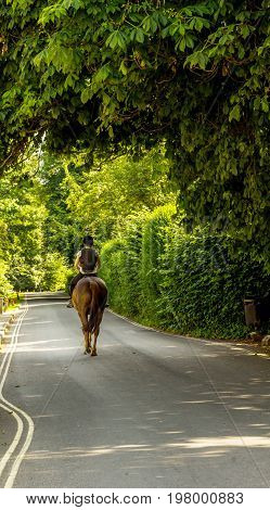 Woman Riding A Horse On The Street, Rural Town, Green Plants