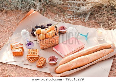 Making picnic with bread cakes waffles fruits and book outdoors. Summer holidays.