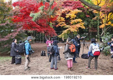 Koyo Photographers