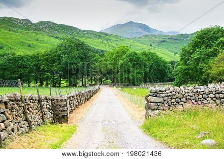Rural landscape in Lake District National park, road side views, United Kingdom