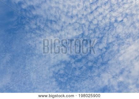 Altocumulus Sky Texture Background at Sunny Day. Light Scenic Environment