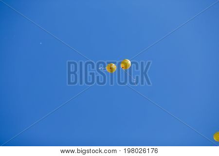 Two Floating Yellow Balloons In The Blue Cloudless Sky. Party, B