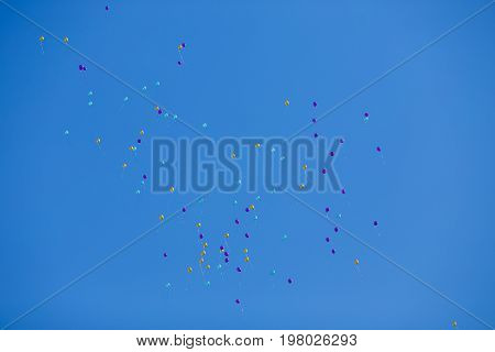 Many Floating Multicolored Balloons In The Blue Cloudless Sky. P
