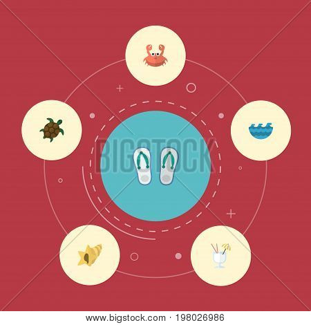 Flat Icons Shell, Slippers, Cancer And Other Vector Elements