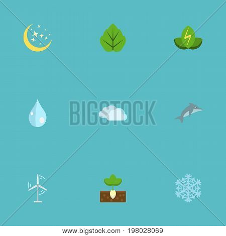 Flat Icons Playful Fish, Sprout, Winter Snow And Other Vector Elements