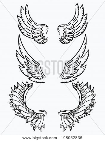 Set of wings. Collection of black-and-white wings for clipart. Abstract angel wings. Tattoo.