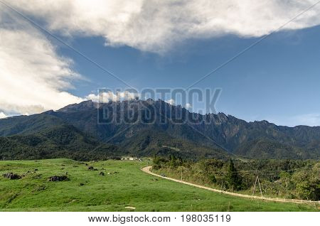 Majestic Mountain Kinabalu with blue sky background at Desa Cattle Dairy Farm in Kundasang,Borneo,Malaysia.Nature view of Borneo tropical jungle.