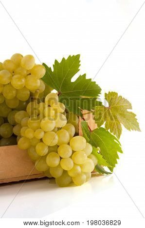 white green grape fruit with leaves isolated on white background.