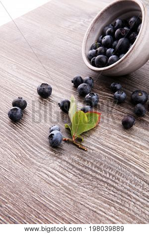 Freshly Picked Blueberries In Wooden Bowl. Juicy And Fresh Blueb