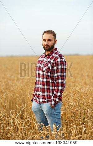Portrait of a bearded farmer standing in a wheat field. Stilish hipster man with trucker hat and checkered shirt on. Agriculture worker