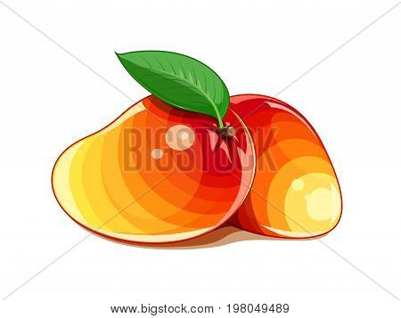 Mango. Two Ripe juicy tropical fruit with green leaf. Natural organic vegetarian healthy food. Isolated white background. Vector illustration.