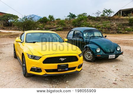 Ford Mustang And Volkswagen Beetle