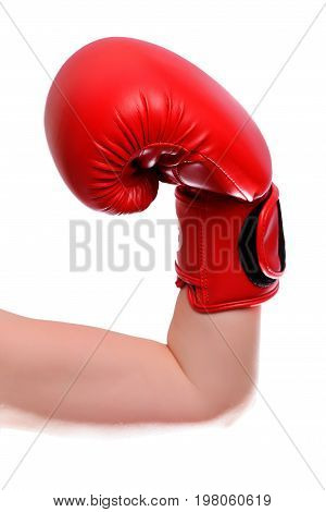 Isolated Tensed Hand In Red Boxing Gloves On White Background. Vertical Frame