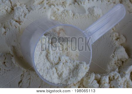 Whey protein wih scoop in protein package
