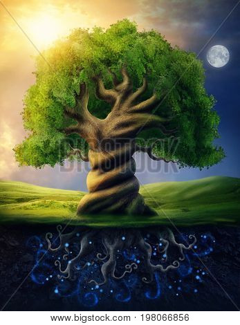World tree as incarnation of the universe as a whole
