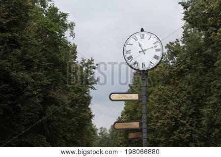 Watch with round white dial and roman numerals on a black pole in the park in summer sunshine