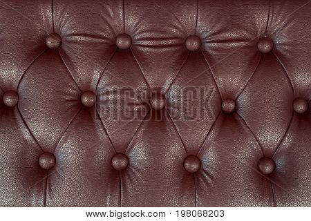 Elegant furniture upholstery in antique style a