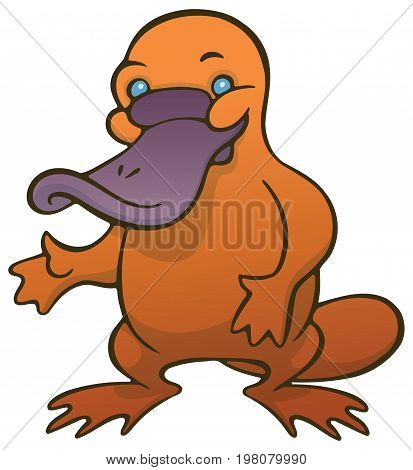 Funny cute cartoon platypus or duckbill - You can design cards, part of platypus logo, mascot, corporate character and so on. Lively animal character.