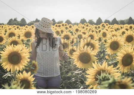 Young caucasian woman with long hairs at sunflowers field