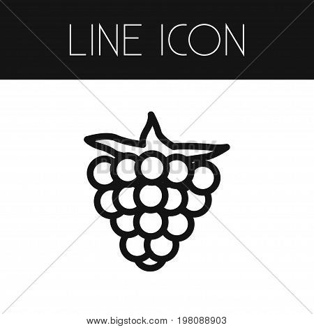Raspberry  Vector Element Can Be Used For Razz, Raspberry, Berry Design Concept.  Isolated Razz Outline.