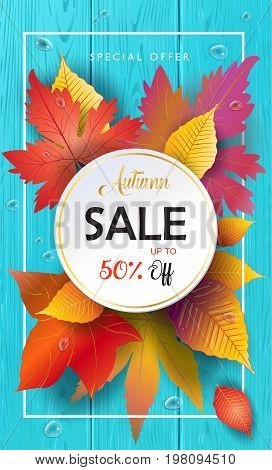 Sale Autumn background with maple leaves, fall leafs, water drops on wood texture. Turquoise color wooden pattern. Fall Sale gift card, poster Vector