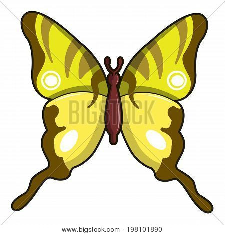 Iphiclides podalirius butterfly icon. Cartoon illustration of iphiclides podalirius butterfly vector icon for web design