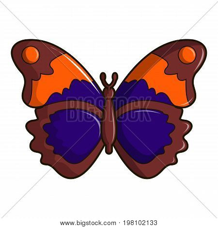 Butterfly brown icon. Cartoon illustration of butterfly brown vector icon for web design