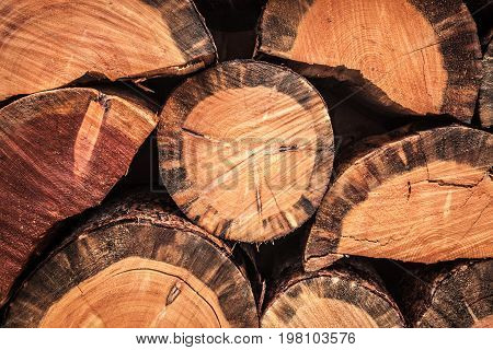 A woodpile of stacked chopped firewood logs.