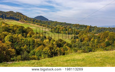 Forest On Hills In Mountainous Countryside Valley
